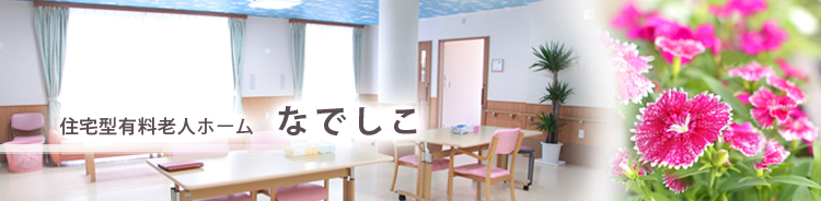 submain_nadeshiko12